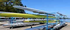 Boats and Blue Skies (littlestschnauzer) Tags: bucs regatta rowing boat club boats nottingham uk 2018 may water national centre sport sports holme pierrepoint rack uni university sun sunshine