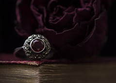 the beauty of age (Emma Varley) Tags: macromondays lowkey antique vintage beauty book leather goldleaf ring silver garnet rose withered old stilllife