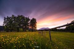 Beautiful spring (em-si) Tags: kärnten carinthia austria österreich nikond800 irix15mm24 villach spring frühling sonnenuntergang sunset feld field