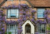 Wisteria Time (keithhull) Tags: house brickwork doors windows wisteria flowers spring thame oxfordshire 2017