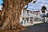 The Duke of Marlborough Hotel (Paddle Man) Tags: heritage weatherboard hotel tavern pub fig veranda verandah bayofislands jetty pier restaurant waiter yacht historic gnarly vines roots root trunk palm balcony balustrade dining publican history