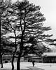 #2018#February# #City#life#minimalist #極簡主義 #頓悟#Realize #SKY #spunsugar #棉花糖#Tourist #雲圖 #陽光 #Sun #自然 #natural #Shutterstock#GettyImages #Mattleung (leung.manfai@ymail.com) Tags: 2018 city 極簡主義 頓悟 sky spunsugar 棉花糖 雲圖 陽光 sun 自然 natural shutterstock mattleung