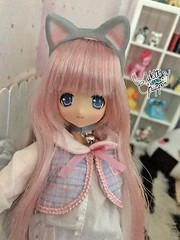 1 (Welt Der Puppen) Tags: anime azone pureneemo manga doll muñeca 16 cat gato meow alissa maya fannyfanny fanny