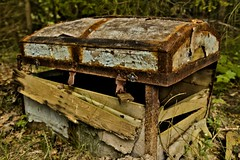Treasure Chest (ReppiX) Tags: treasure chest canon 200d 1750mm old holz gras urbex kiste alt schatzkiste rotten