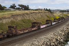 Sea Land 5-Pack (imartin92) Tags: rodeo california unionpacific railroad railway freight train sealand container intermodal well railcar
