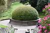 Round Hedge (Bri_J) Tags: biddulphgrangegardens nationaltrust biddulph staffordshire uk statelyhome nikon d7200 gardens round hedge topiary