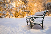 Winter park (Bence Boros) Tags: sony alpha a77m2 a77ii 35mm f18 classic focallength winter park snow cold weather bench lillafüred hungary bokeh warm lights