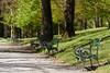 Ambraser Schlosspark - Innsbruck (Ernst_P.) Tags: aut innsbruck österreich schlossgartenambras tirol pflanze baum bank schlossparkambras samyang 135mm f20 walimex