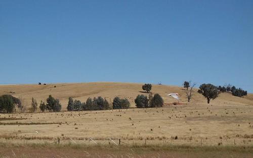 - 'Trevellin', Cookardinia NSW 2650