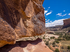 Petros In Situ (xjblue) Tags: 2018 southernutah utah desert grandgulchbackpackingtripbulletcanyongovernmenttrail spring rockart sandstone petroglyph