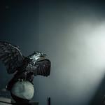 The Eagle has landed thumbnail