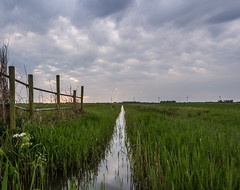 Polder landscape (Marco van Beek) Tags: polder landscape sky clouds nature holland europe beautiful world nikon d5000 afs dx nikkor 18200mm f3556g ed vr ii