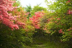 TAKAHIRO 画像2