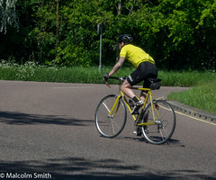 Yellow Jersey (M C Smith) Tags: cycle yellow man tattoos pentax k3 road roundabout kerb trees grass signs weeds green black chrome white lines shadows