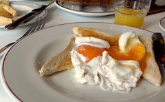 Poached Eggs on Toast (Tony Worrall) Tags: add tag ©2018tonyworrall images photos photograff things uk england food foodie grub eat eaten taste tasty cook cooked iatethis foodporn foodpictures picturesoffood dish dishes menu plate plated made ingrediants nice flavour foodophile x yummy make tasted meal nutritional freshtaste foodstuff cuisine nourishment nutriments provisions ration refreshment store sustenance fare foodstuffs meals snacks bites chow cookery diet eatable fodder breakfast eggs yolk early poachedeggs toast bread orange runny