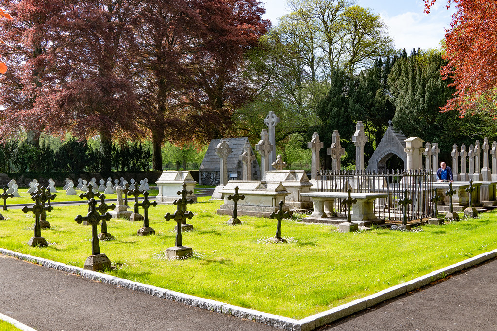 ST. PATRICK'S COLLEGE CEMETERY IN MAYNOOTH [SONY A7RIII IN CROP SENSOR MODE]-139543