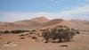Into The Desert (jan-krux photography - thx for 3 Mio+ views) Tags: namibia desert africa travel reisen adventure abenteuer sand wueste olympus omd em1 em1mkii afrika sossusvlei duenen huegel berge 4x4 offroad barren offen leer unwirtlich busch bush
