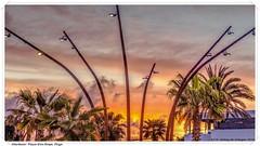 Palmeras y farolas. Atardecer en la playa d'en Bossa. Ibiza / Palm trees and lampposts. Sunset on the beach d'en Bossa. Ibiza (José María Gómez de Salazar) Tags: ibiza atardecer puestadesol árbol palmera baleares islasbaleares españa paisaje color colorido sunset tree palmtree balearicislands spain landscape colorful canon eos60d canoneos60d