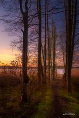 A path to the light (Joni Salama) Tags: lauttasaari auringonlasku valo exposureblending helsinki suomi kevät helsingfors uusimaa finland fi light