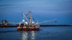 late fishing (Point Pleasant Beach, NJ) (Steve Stanger) Tags: sunset fishing inlet manasquan pointpleasantbeach seascape shorescape shore shoreline njshore seashore jerseyshore nj boat ship olympus olympusomdem10markii olympusm1442mmf3556ez