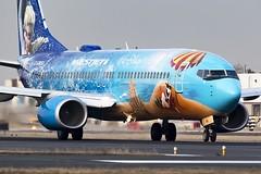 Frozen (Dave Brook) Tags: westjet frozen disney cgwsv b738 b737 boeing airliner palne cyyz