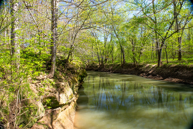 Hoosier National Forest - Lost River, Paw Paw Marsh