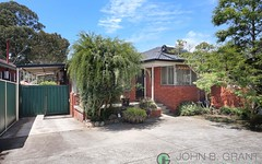 25 Treloar Crescent, Chester Hill NSW