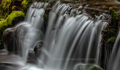 Small Cataract, Sol Duc River (chasingthelight10) Tags: rivers landscapes travel events photography forests waterfalls places washingtonstate olympicnationalpark solduc solducriver otherkeywords river riparianhabitat