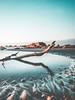 Sunrise Light (Bron.Wolff) Tags: beach blue colours early goldenglow landscape light longexposure nature ocean patterns reflections ripples rocks sand scenery sea seascape shadows sky sunrise water