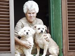 Cabells blancs- Pelos blancos (salvat1946) Tags: gent gos finestra