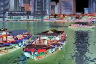 Singapore - Waterlife - 31bb