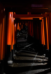 Going deep (mara.ortuso) Tags: fushimi inari red temple meditation path kyoto japan nightlight