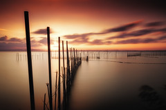 To the end (Anto Camacho) Tags: sunset sky ligh nature landscape water lake lakescape sun clouds spain valencia albufera