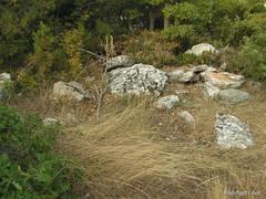 Крим, Таврські могильники на горі Кішка InterNetri Ukraine 2009 155