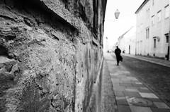 Oblivion (Koprek) Tags: gr ricoh croatia 2018 april