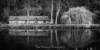 The Boathouse & the Winter Weeping Willow Tree (Mono).
