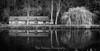 The Boathouse & the Winter Weeping Willow Tree (Mono). (Mike Atkinson Photography) Tags: aoi elitegalleryaoi bestcapturesaoi aoi3levels