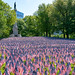 """Massachusetts Military Heroes Fund Memorial Day Ceremony 05.24.18 • <a style=""""font-size:0.8em;"""" href=""""http://www.flickr.com/photos/28232089@N04/42326630791/"""" target=""""_blank"""">View on Flickr</a>"""