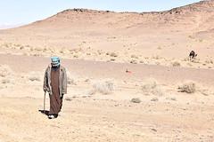Tuareg Herder (meg21210) Tags: tuareg herder nomad sahara desert man goats camels sand landscape morocco headdress herd