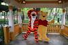 tiger pooh (alienalice) Tags: hkdl hkdisneyland mickey minnie mulan mushu duffy stellalou tiger pooh stitch