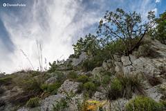 Lungo il sentiero per l'Eremo dello Spirito Santo (daniele.fedele) Tags: paesaggio roccasecca