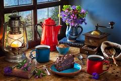 Coffee and Chocolate Cake (memoryweaver) Tags: uk window books pot enamel table tabletop memoryweaver baking cornflowers hellebore valerian spring flowers chocolate cake coffee chocolatecake