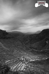 Batad Day2_020412_0010 - BnW (johans318) Tags: canoneos7d mountain clouds rice terraces philippines blackandwhite batad