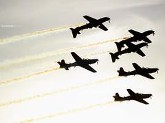 Esquadrilha da Fumaça (EvandroFilho) Tags: forçaaéreabrasileira a29a a29b embraera29supertucano baseaéreadeanápolis sban mirror aircrafts planes airshow