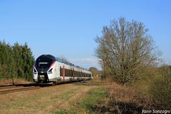 Flambant neuf (Lion de Belfort) Tags: train chemin de fer arbre sncf intercités ic ic1 05 ligne 4 l4 evettesalbert coradia liner carmillon