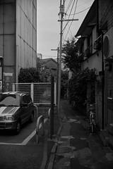 DSC01893 (tohru_nishimura) Tags: sonya7 nokton4014 sony cosina cv oimachi tokyo japan