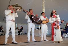 Mariachi (Lars Plougmann) Tags: band trumpet wedding mariachi music singer orchestra volente texas unitedstates us dscf7590