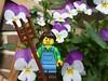 Hornveilchen (captain_joe) Tags: toy spielzeug 365toyproject lego series15 minifigure minifig farmer blume flower