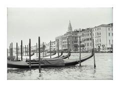 Venice... (LukeDaDuke) Tags: venezia venice venetie italy italia italie biennale canalgrande boat gondola gondel