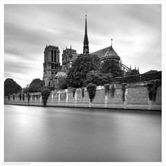 Cathedral Notre-Dame / Paris, France (Andrew James Howe) Tags: paris france notredamedeparis 2notredame cathedral architecture mono blackandwhite
